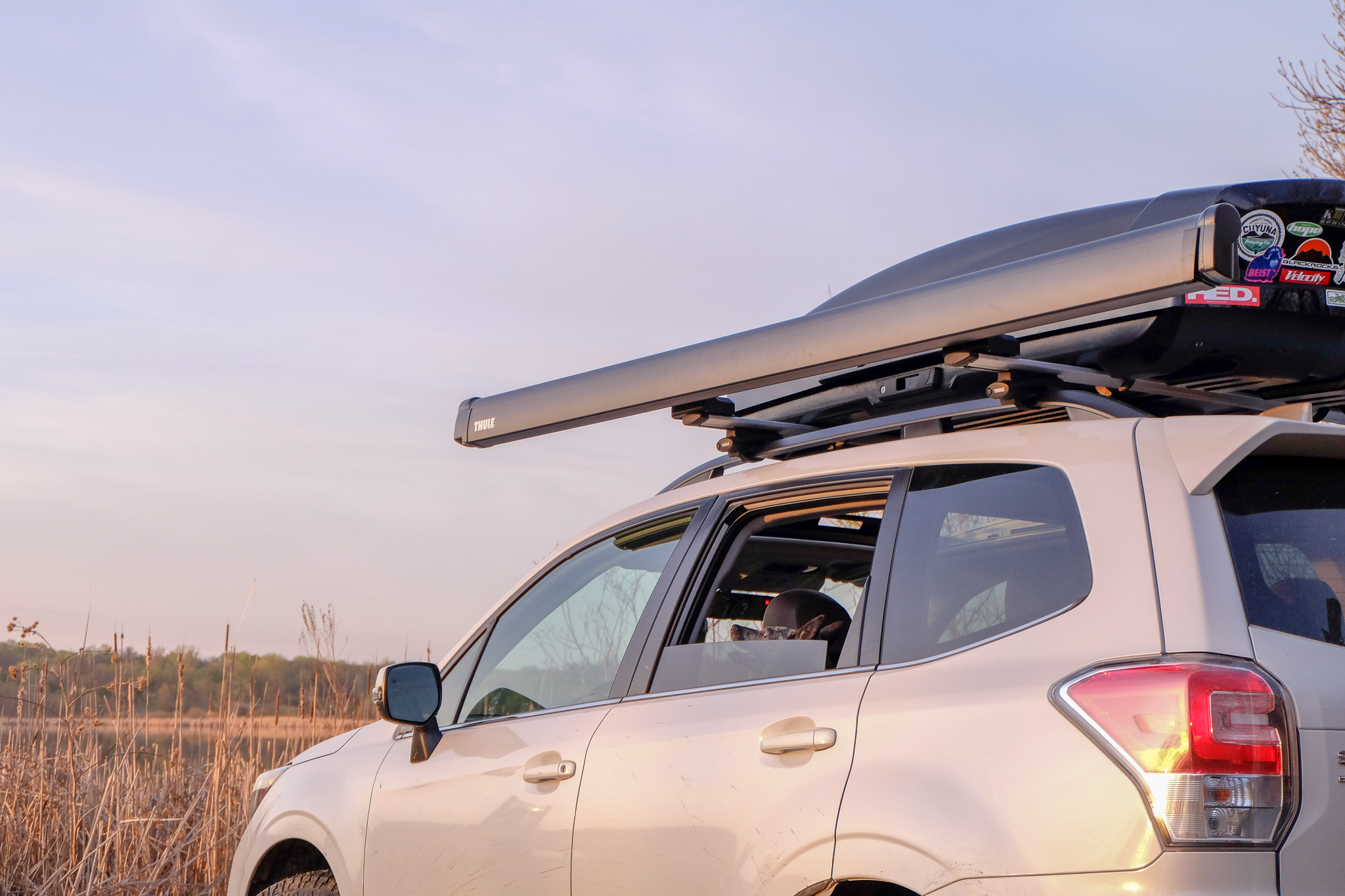 Roadside Relief Thule Awning Deploys Quick Shade Gearjunkie