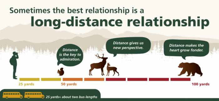 safe distance campaign