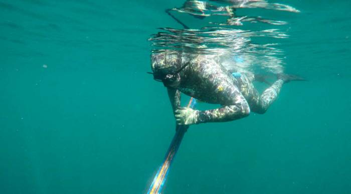 Xcel Thermoflex Free Diver TDC review