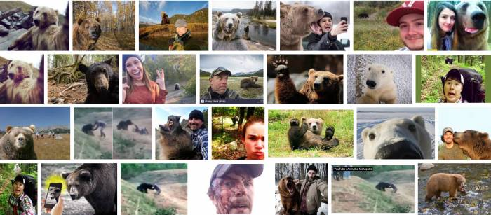 bear selfie shots