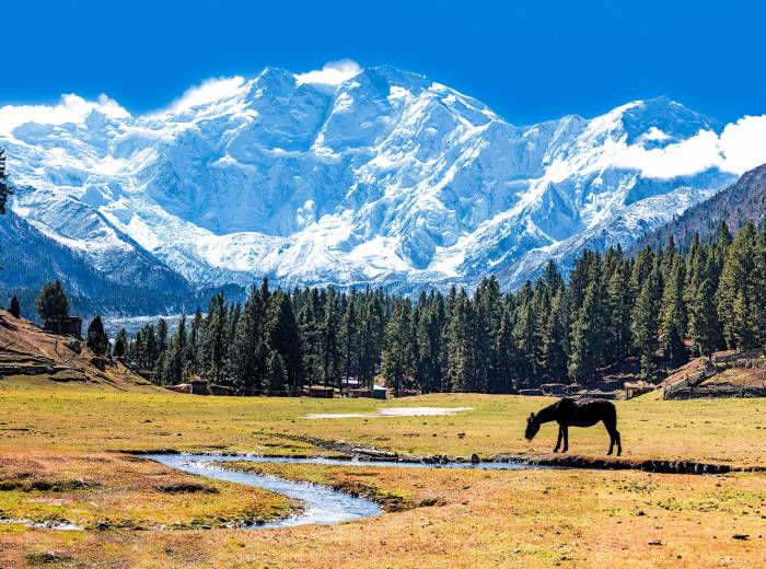 Nanga Parbat most deadly mountain