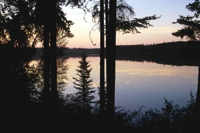 Wood Buffalo National Park