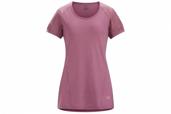 Arc'teryx t shirt sale