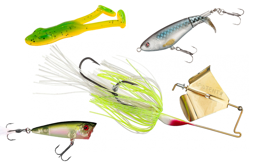 Beating The Banks Best Topwater Bass Fishing Lures And Secrets