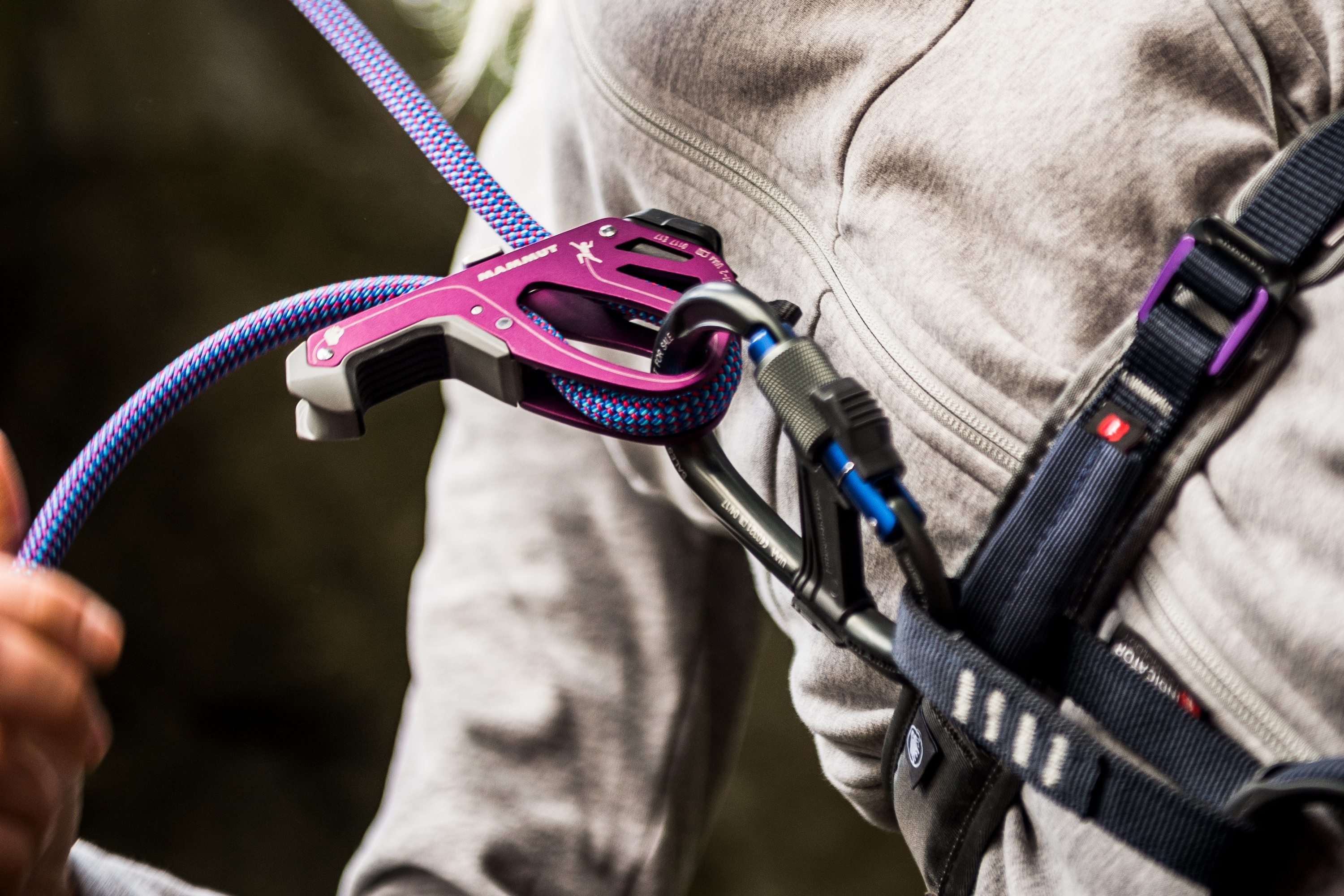 great prices good looking buy popular Best Assisted-Braking Belay Devices for Rock Climbing ...
