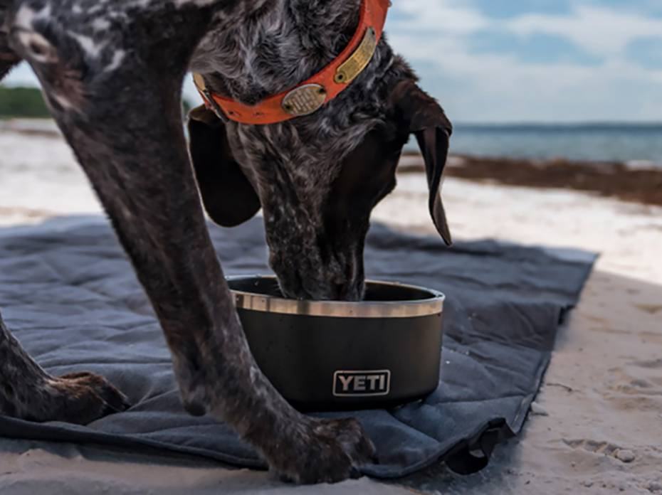 YETI Boomer Dog Bowl and Lowlands Camp Blanket