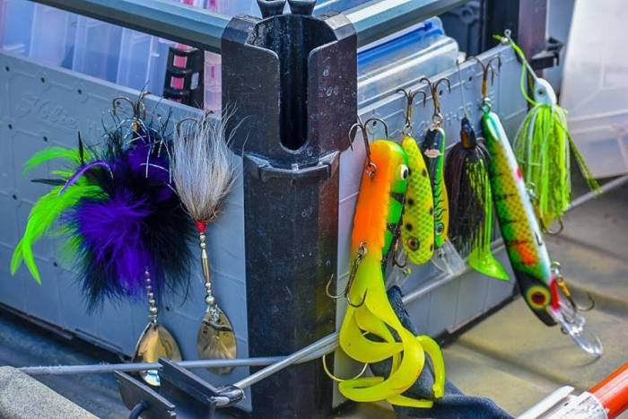 Fall Musky Fishing: The Tips You Need | GearJunkie