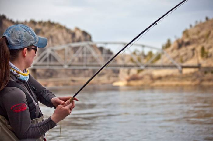 Top Streamers and Tactics for Fall Fly Fishing