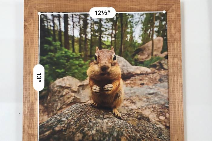 iOS Measure App