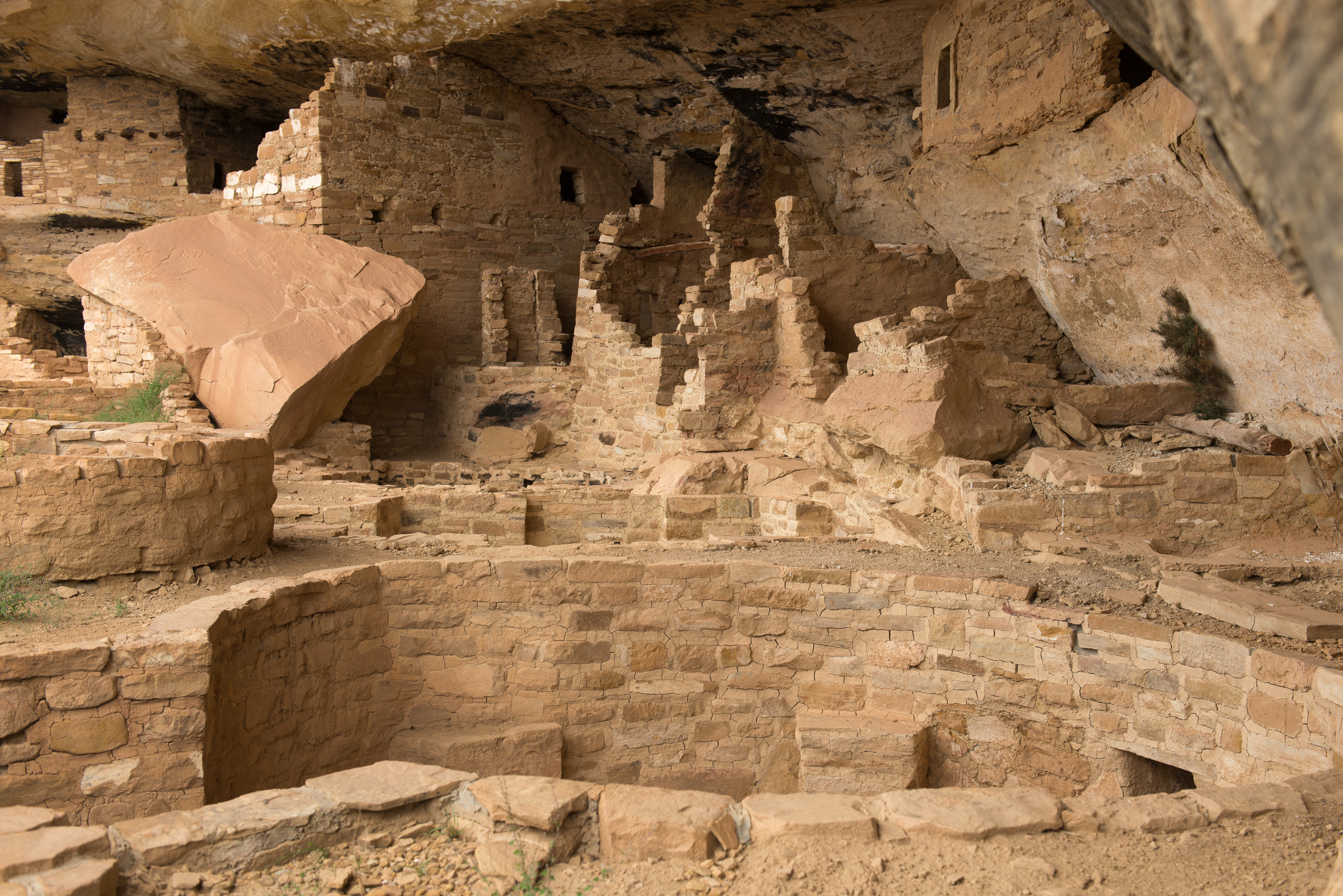 Secret Park Treasure How To See Mesa Verde S Storied Mug