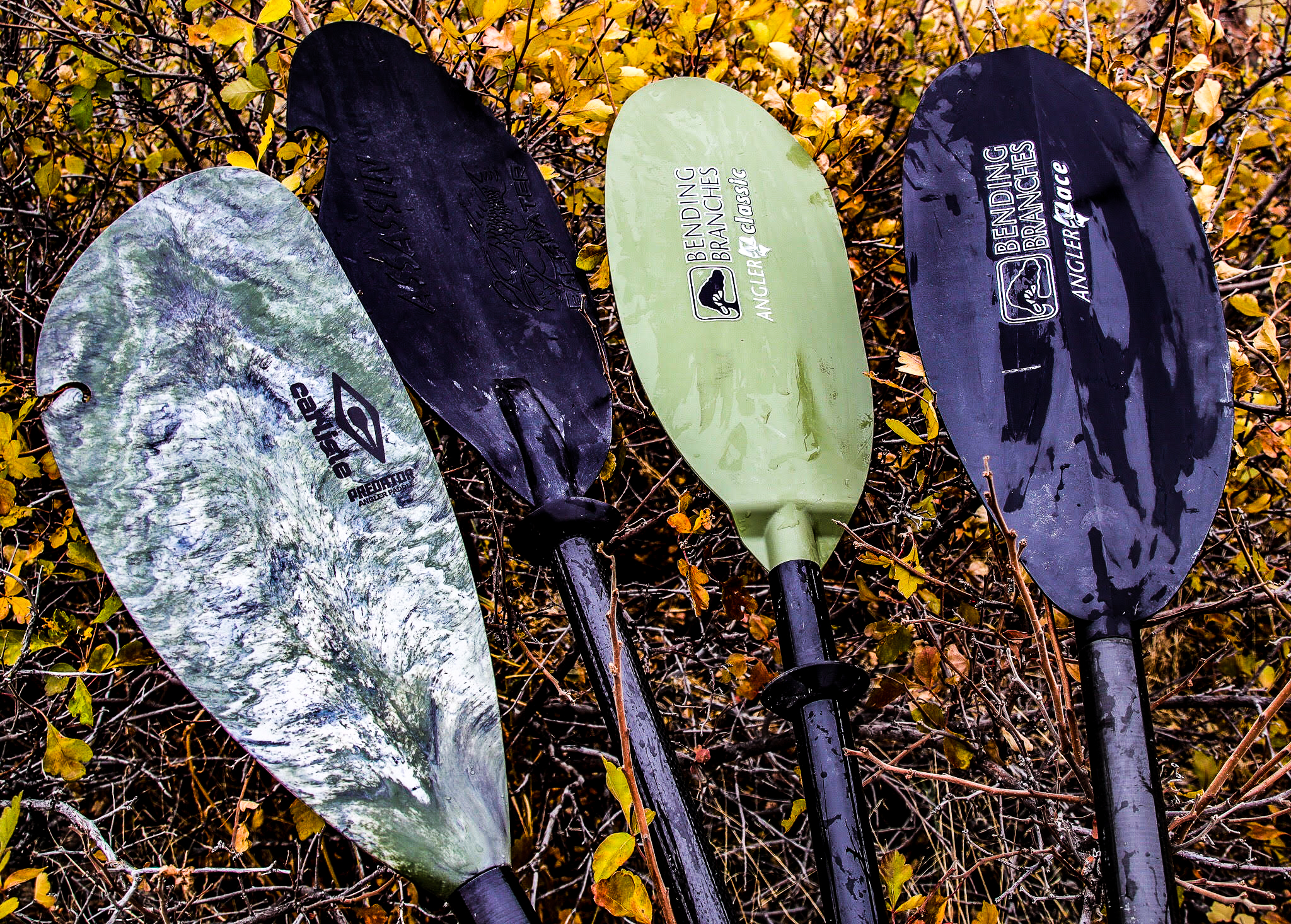 Best Paddle For Kayak Fishing Try One Of These Four