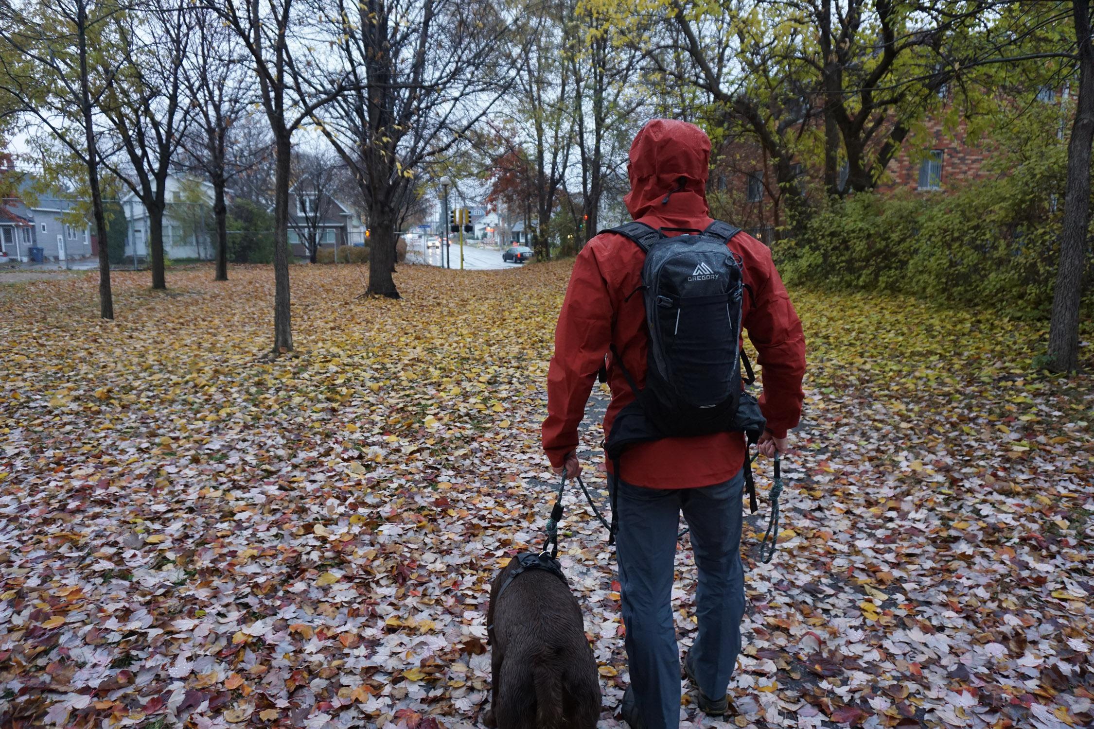 Arc'teryx Zeta SL Red Jacket and Zeta SL Pant Walking Dog