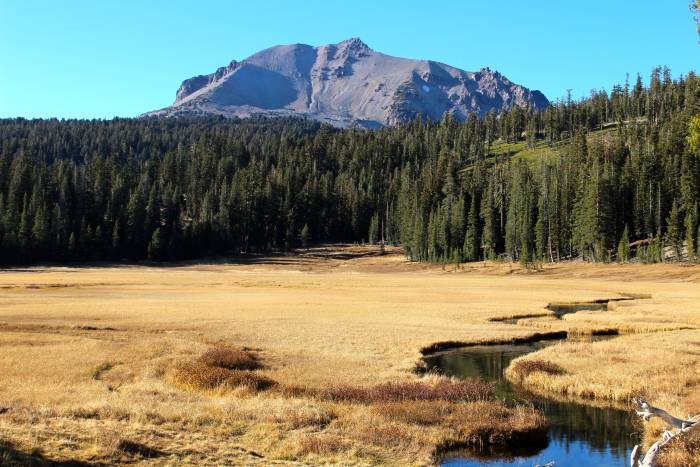meadow in Lassen Volcanic National Park