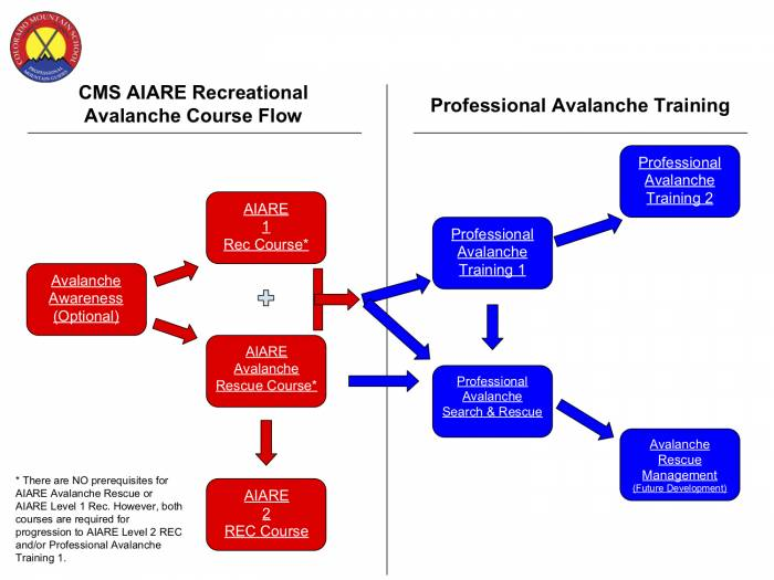 CMS-AIARE-Flow-Chart