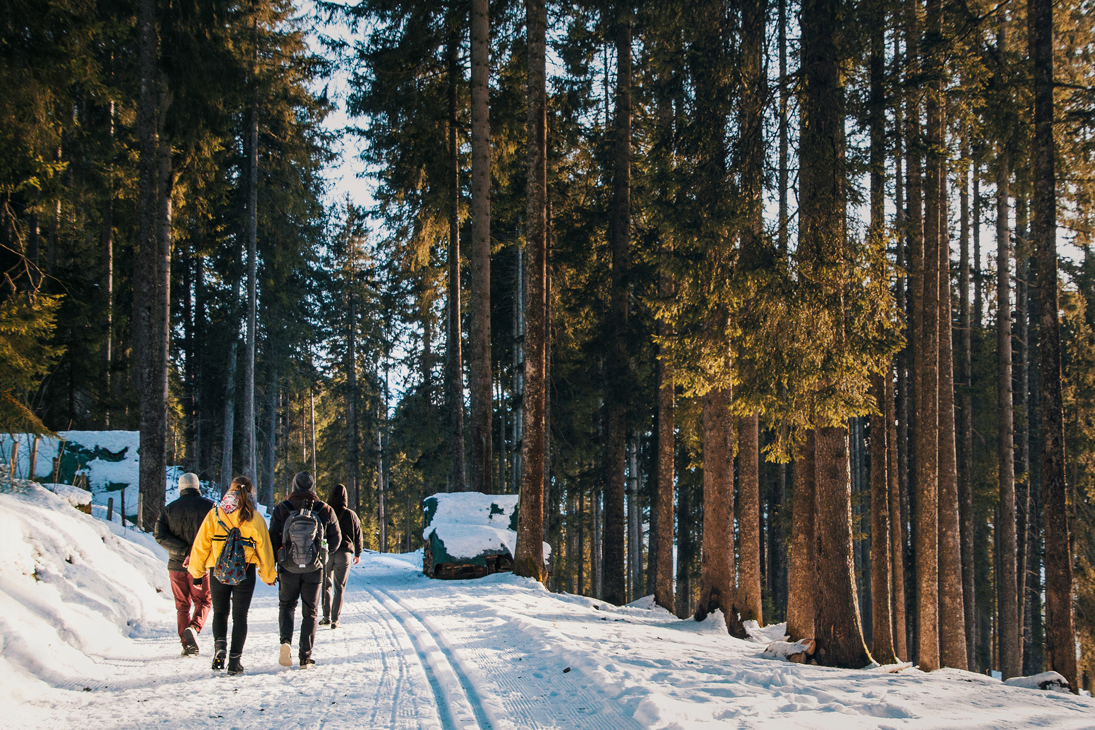 High-Sierra-winter-hike