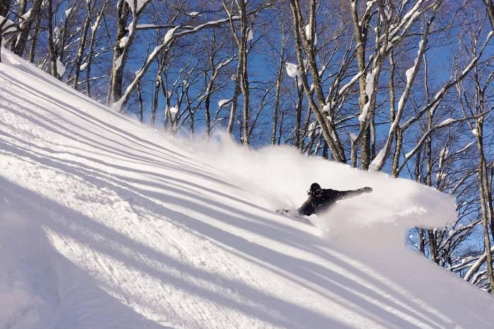 evo Japan ski trip