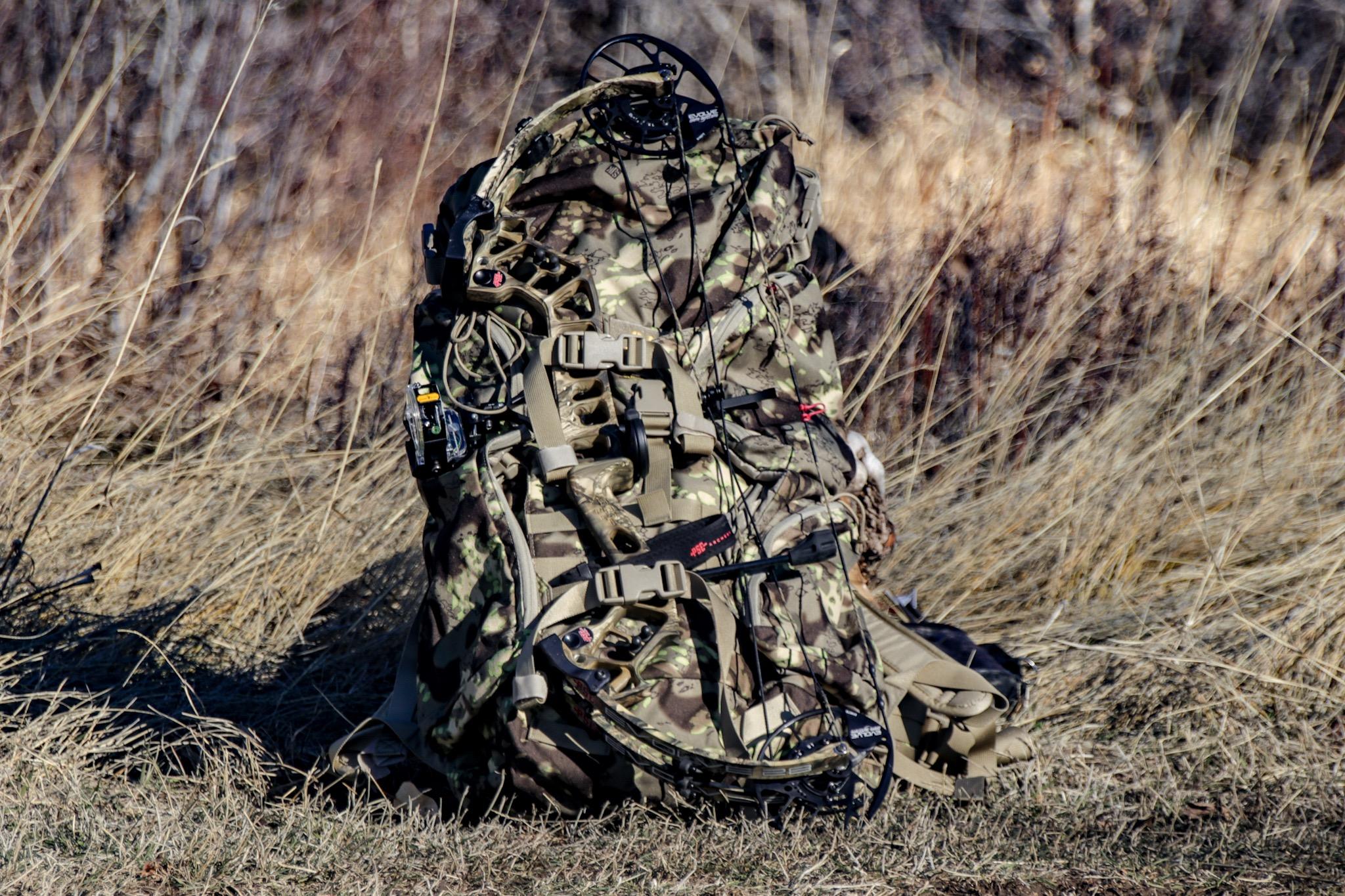 PSE Evolve 28 Bow Review: Big Power, Small Package | GearJunkie