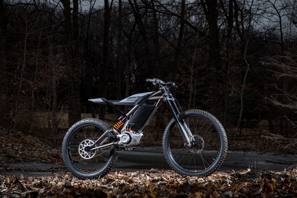 Pegs, Not Pedals: Harley-Davidson Shows New Electric