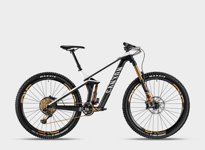 2019 Canyon Strive