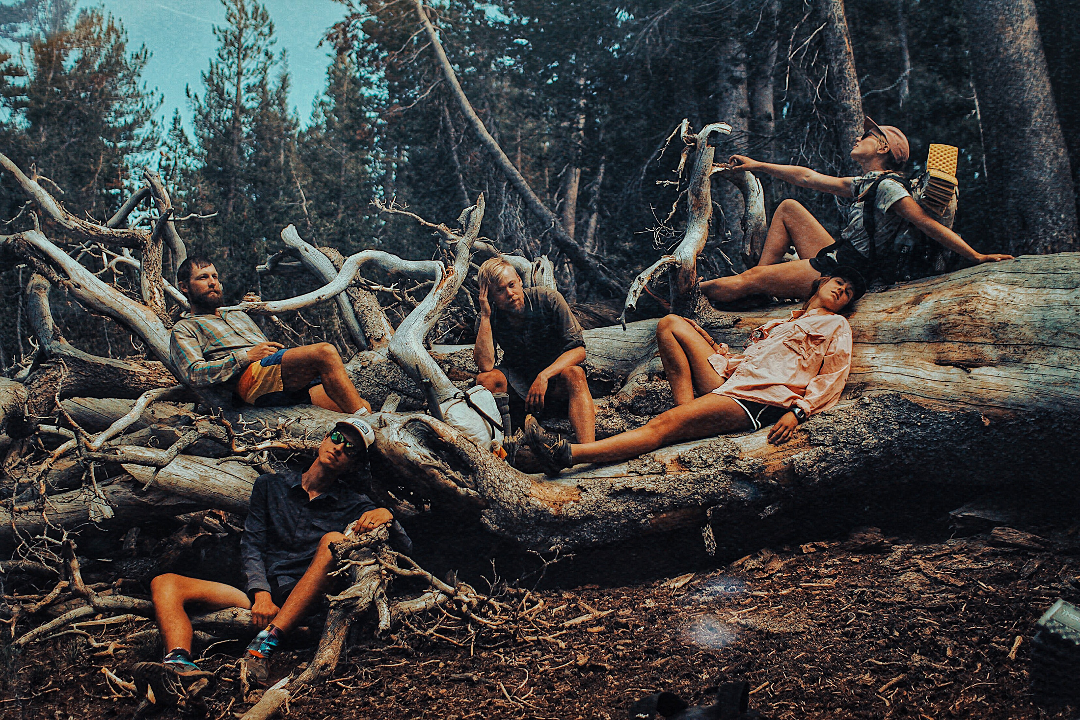 Nasty Beautiful: Captivating Images Expose Hikers at Their Most Vulnerable