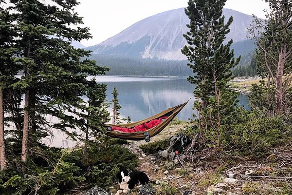 A hammock and a dog with a lake and mountains behind them