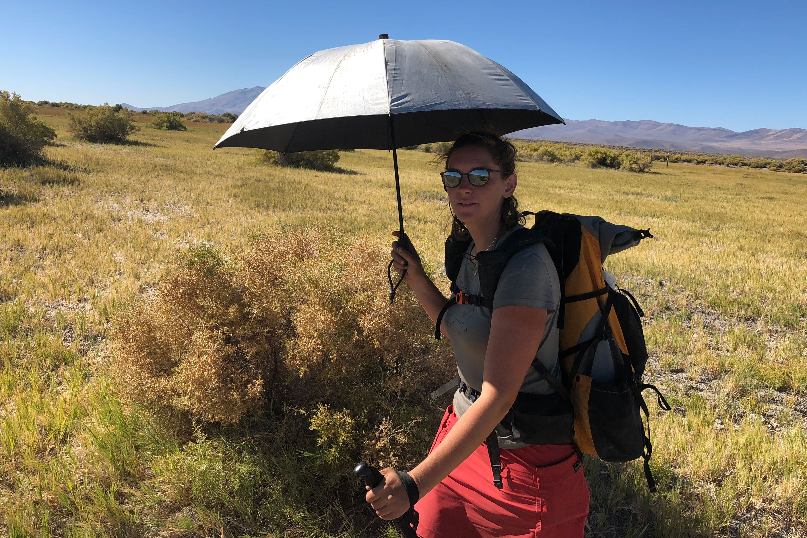 Hiker with umbrella