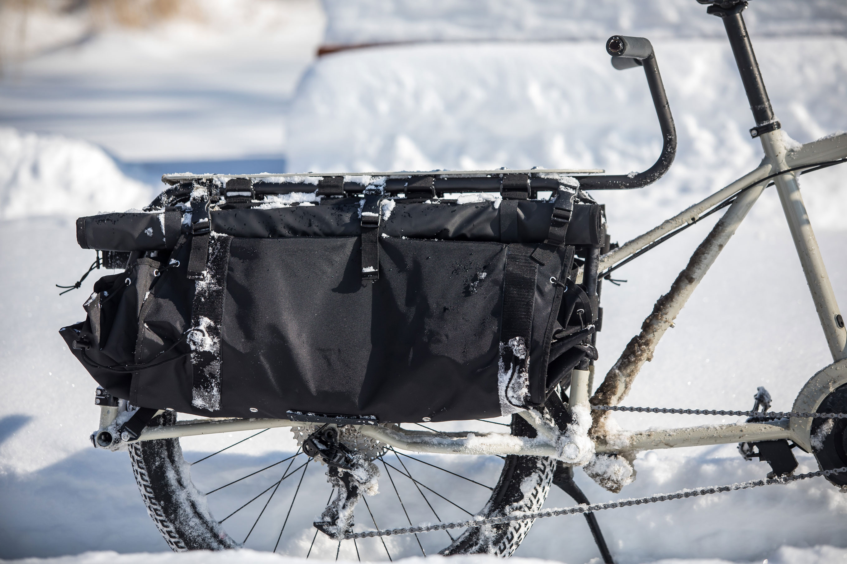 Surly Big Easy cargo e-bike saddle bags