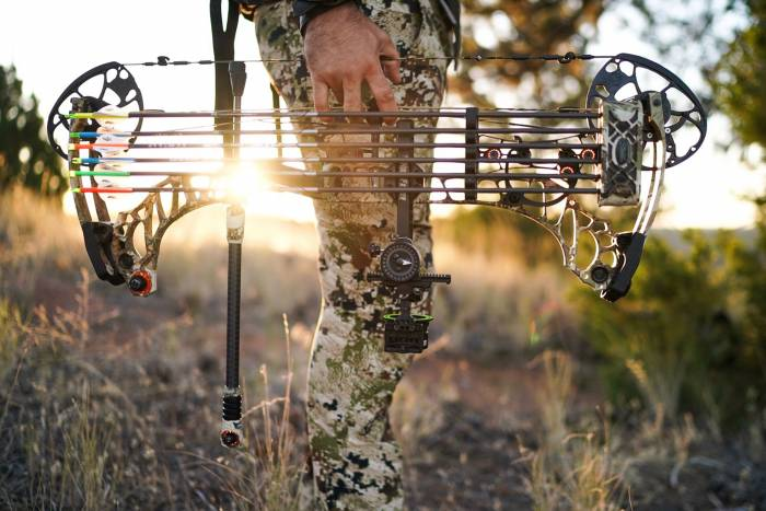 Field Test 2019 Mathews Vertix Compound Bow Review