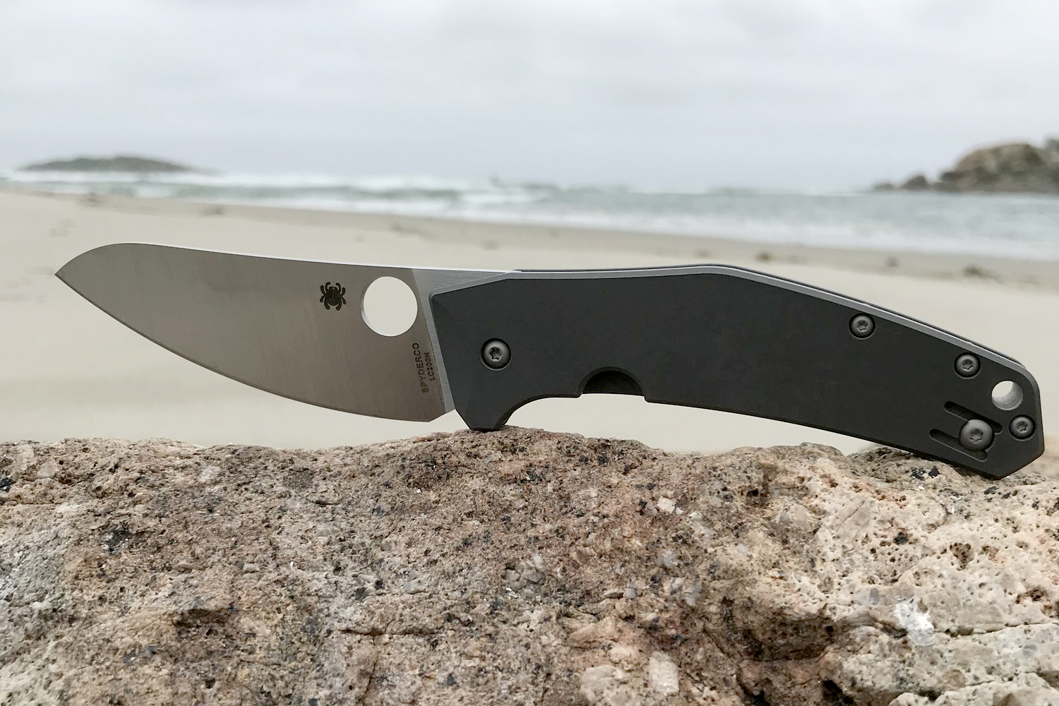 Spyderco Spydiechef Review: The Best Knife Of 2019 | GearJunkie