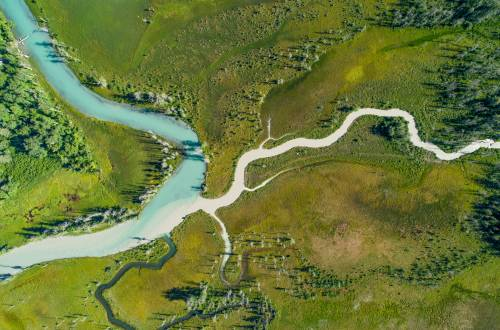 Chilkat river alaska rock paper fish