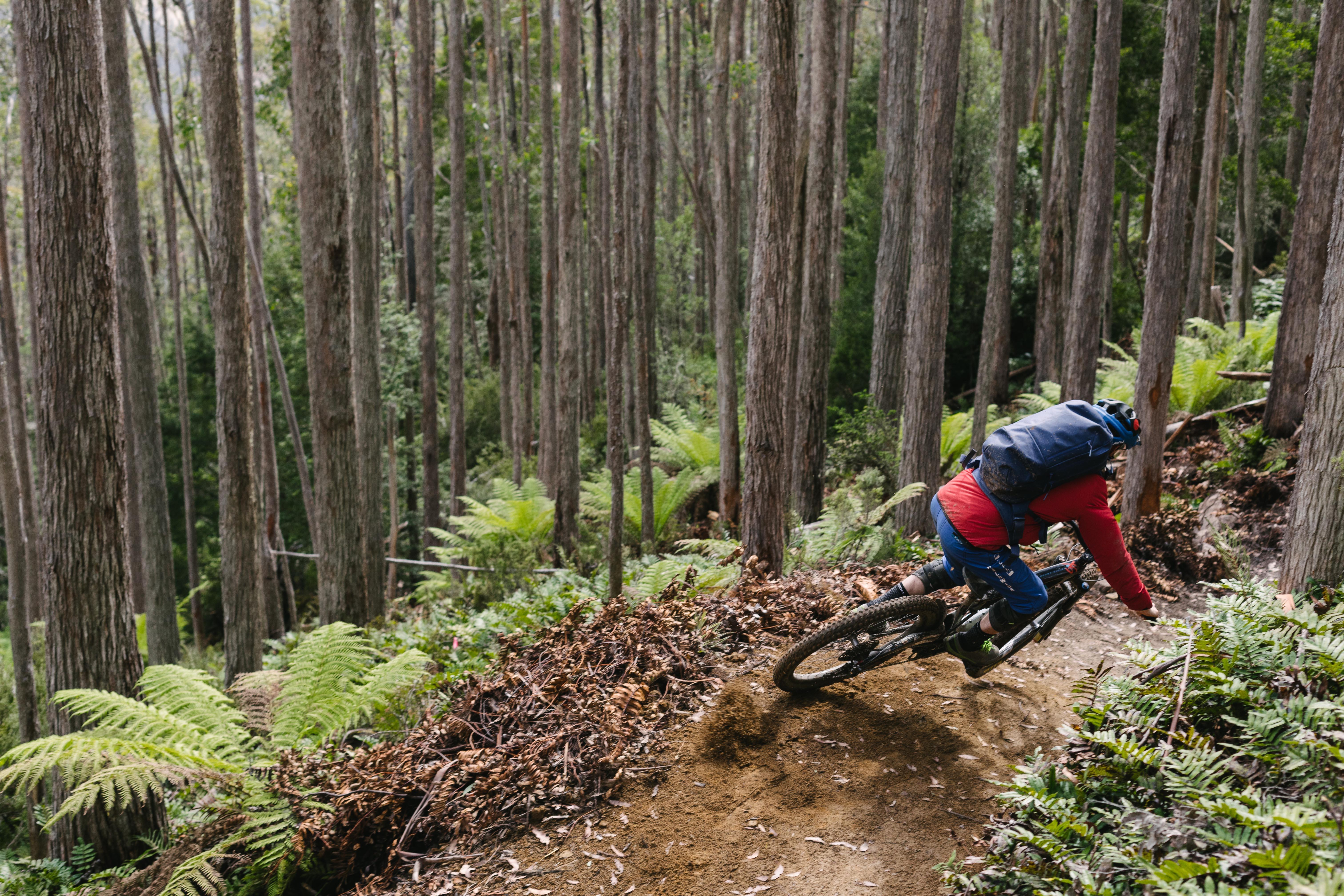 c30fd482271 MTB Pro Picks: Best Mountain Bike Accessories for 2019 | GearJunkie