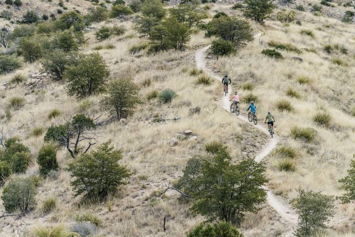 Four cyclists on a winding trail
