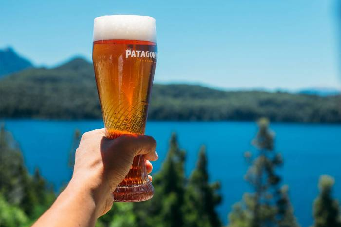 Patagonia Brewing Co pint glass beer