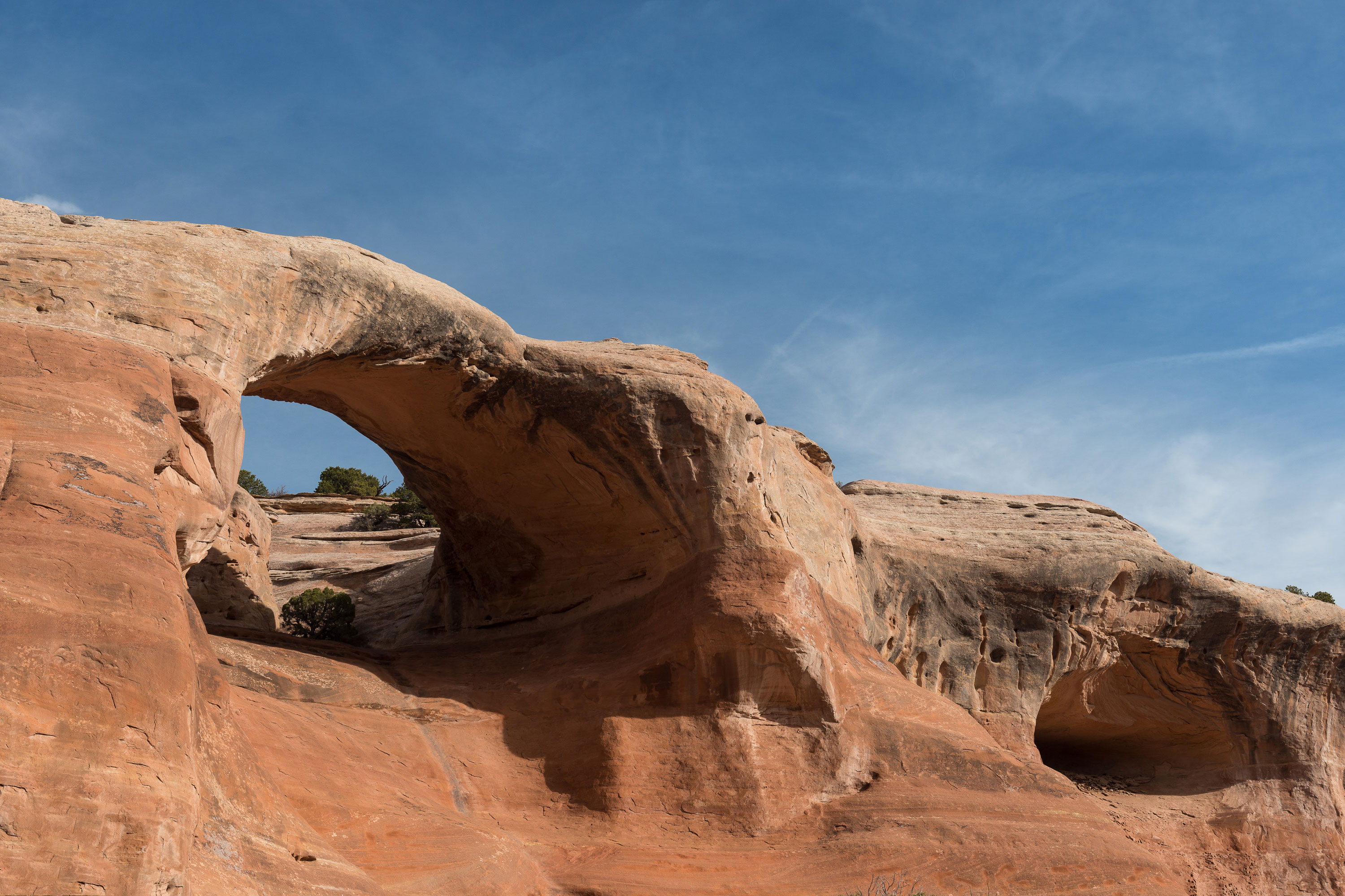 Cedar Tree 'Rainbow' Arch at Rattlesnake Arches Park