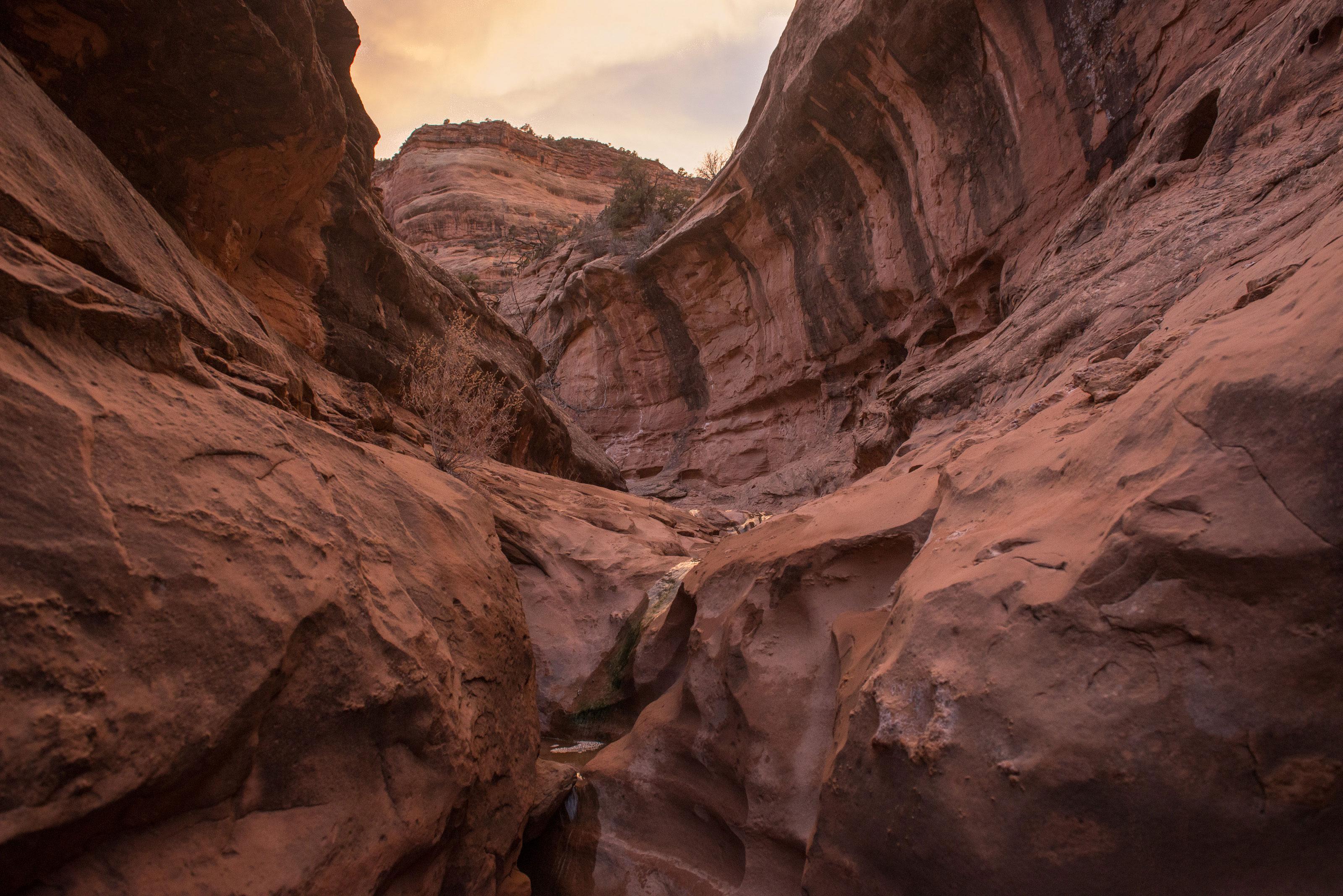 Rattlesnake Arches Park canyon hike