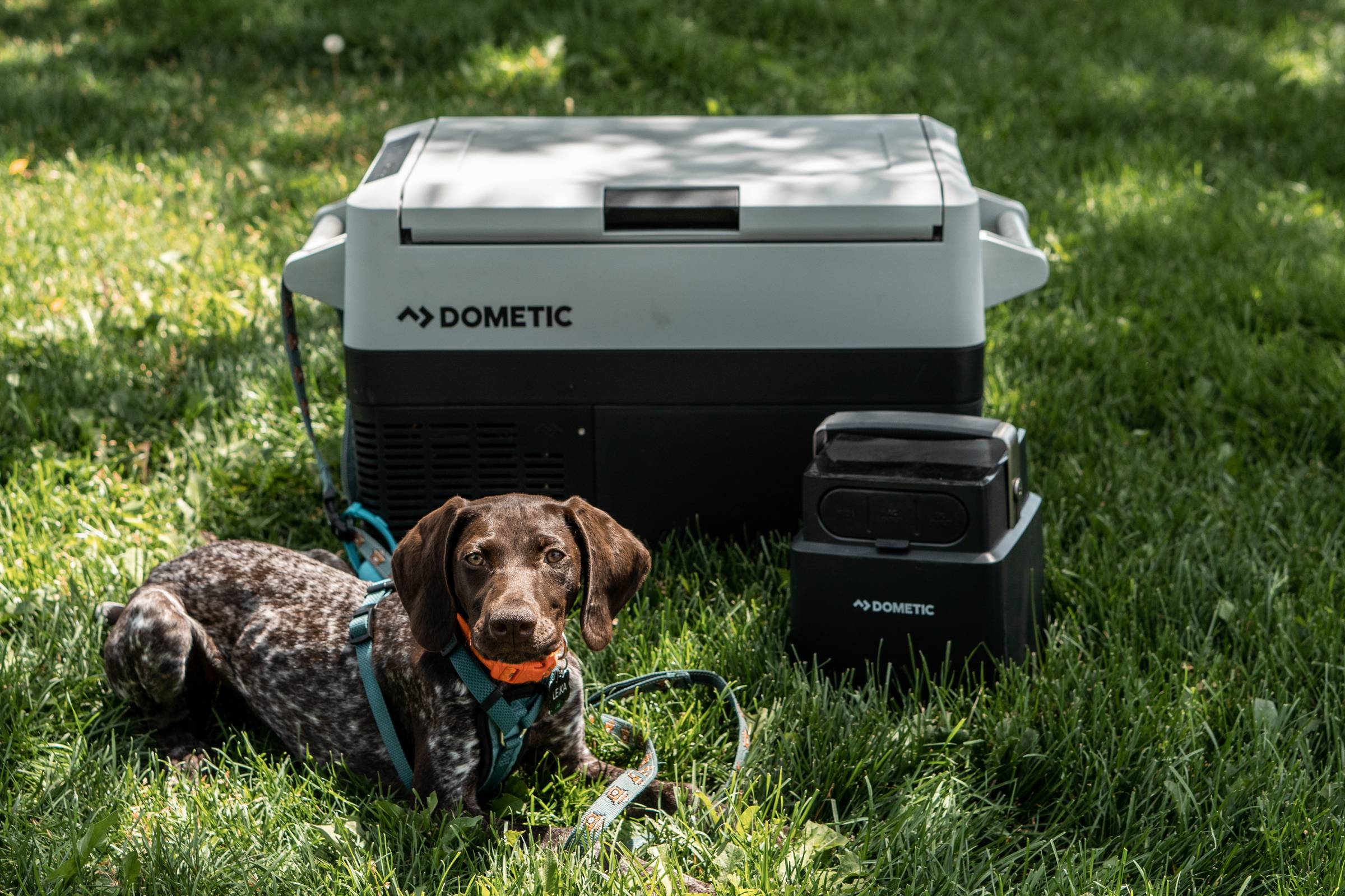 Buying An Electric Cooler 7 Things You Should Know Gearjunkie