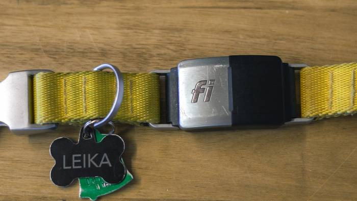 Fi-Collar-Still-1-2