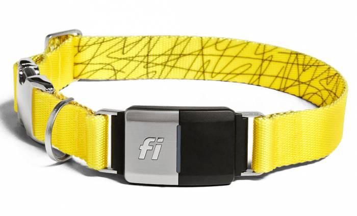 fi-collar
