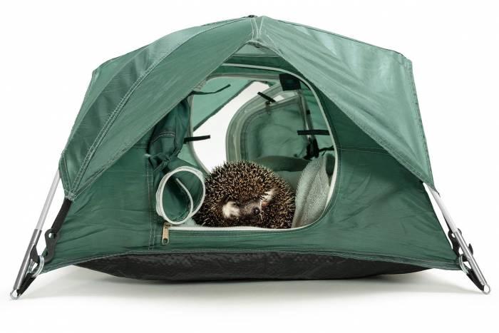 Tiny Tents