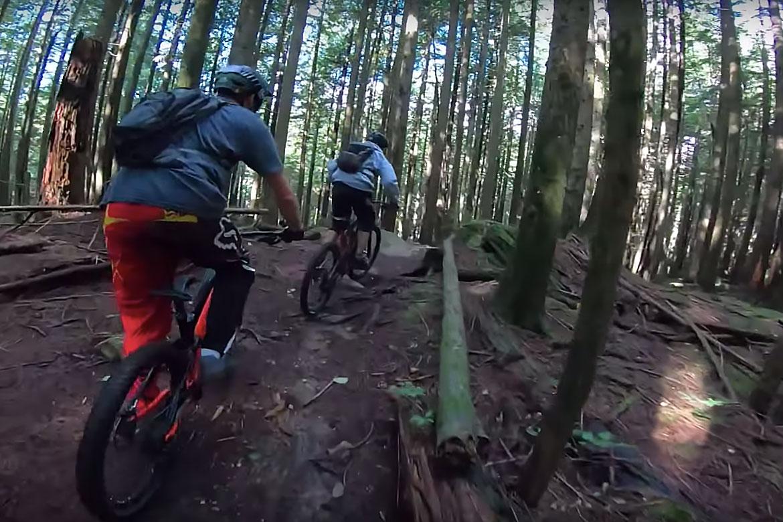 bear mountain bike chase