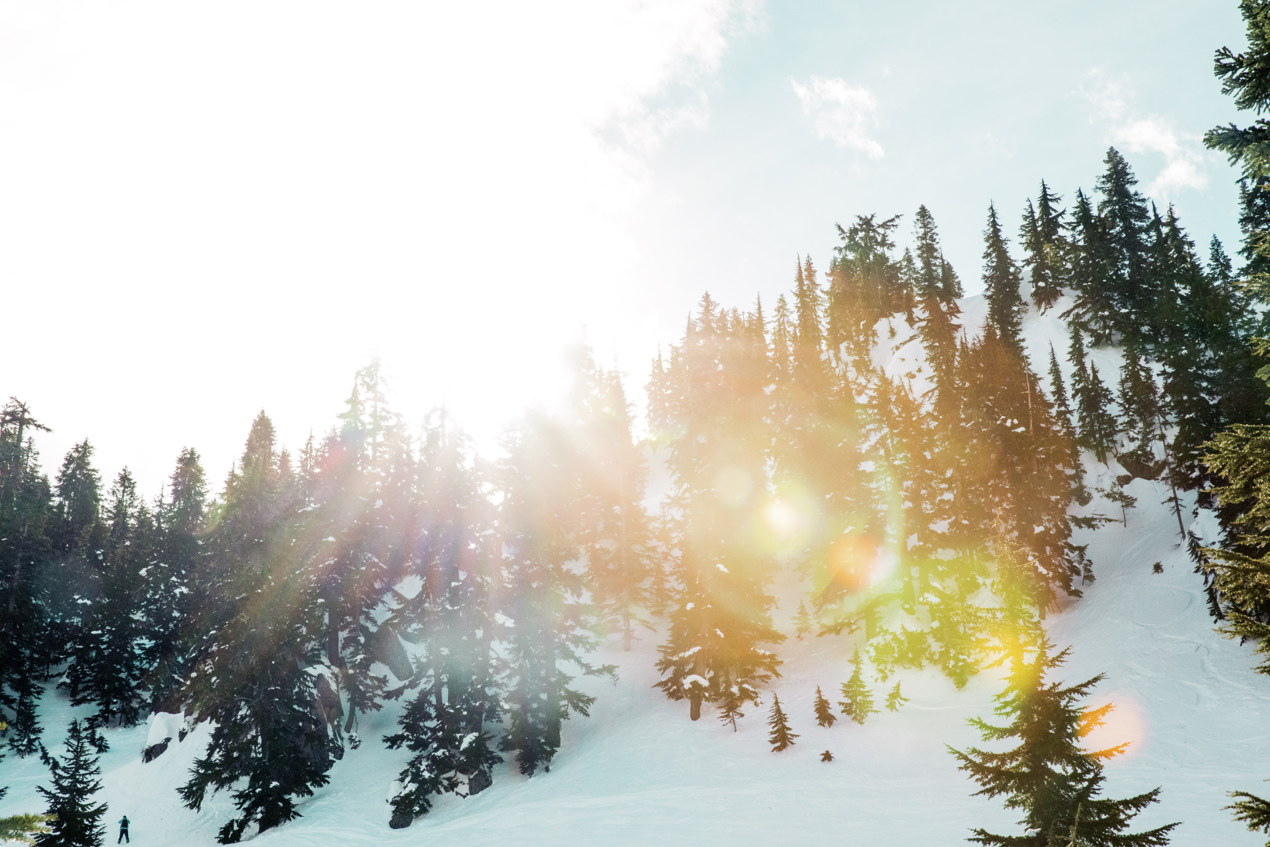 Snowy Mountain with Pine Trees and Sunshine REI