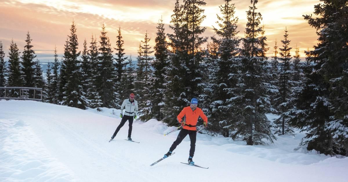 Salomon RS 8 XC Skis Mens