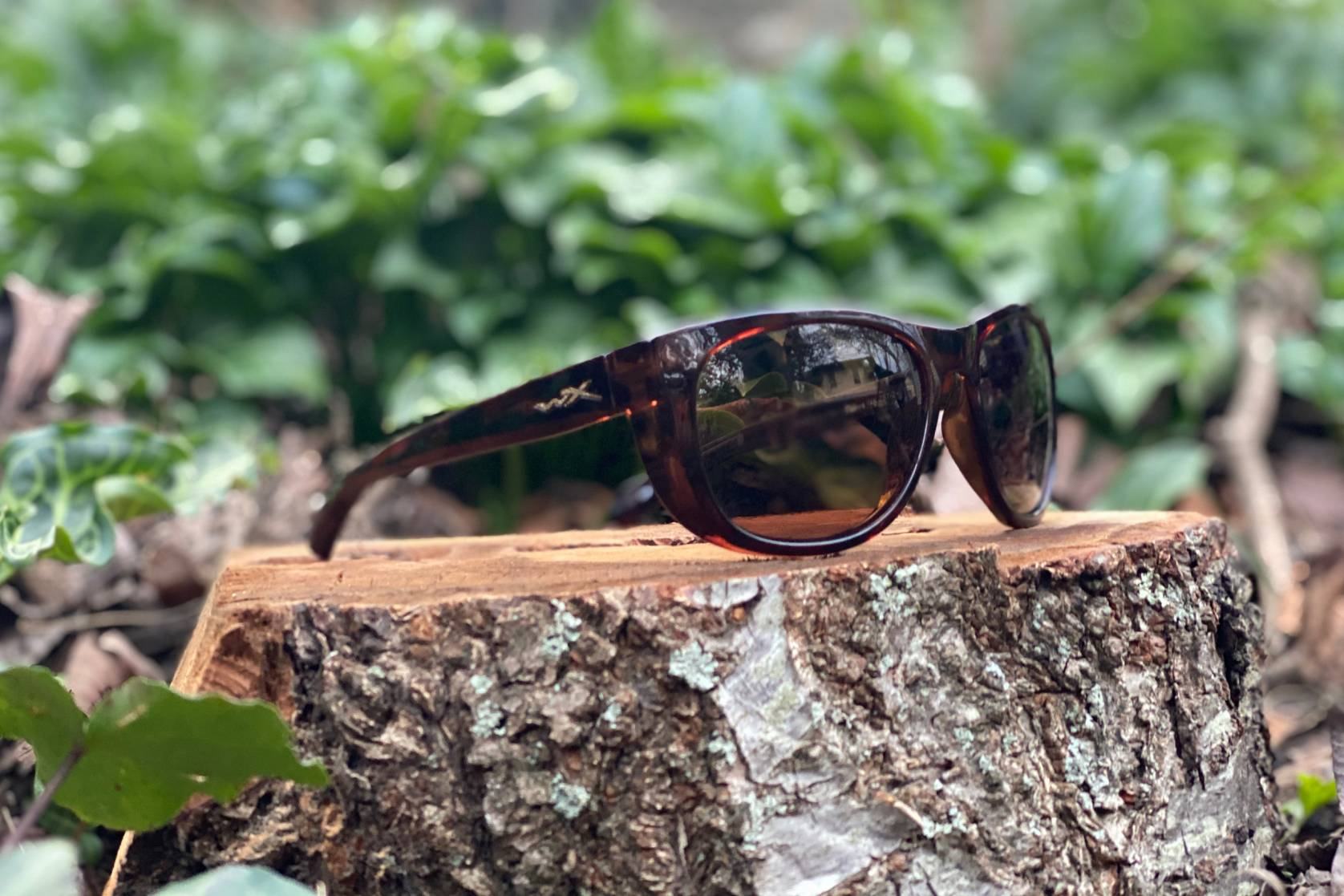 WIley X Captivate Weekender sunglasses