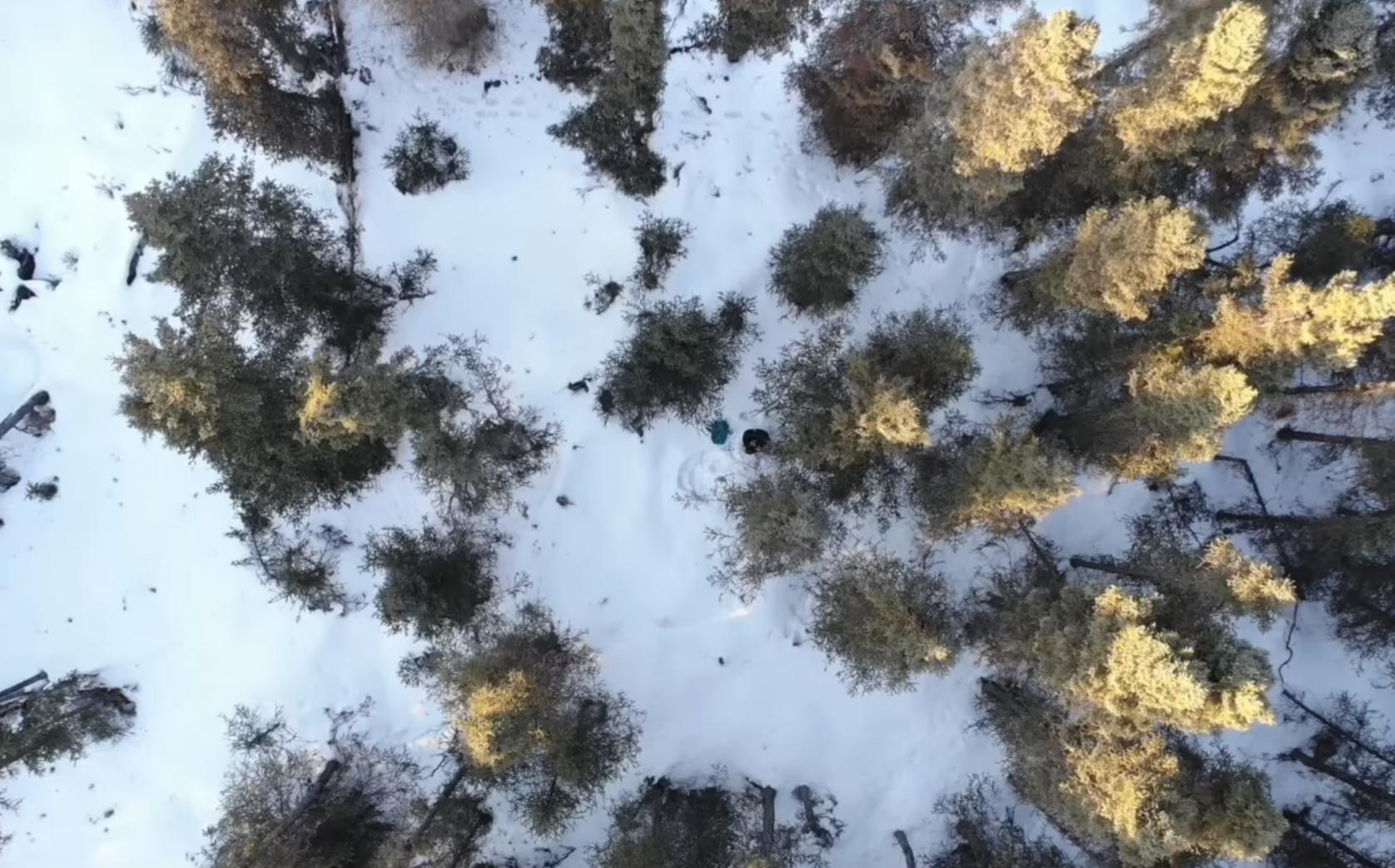 Drone rescue Alaska