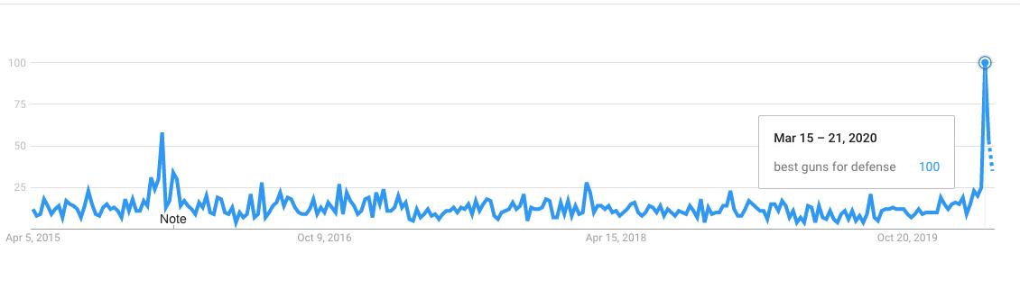best guns for self defense google trend