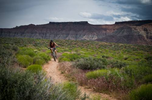 Person Mountain biking in desert singletrack
