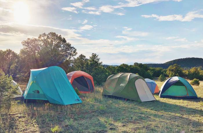 Best Camping Tents _ Photo by Mallory Paige