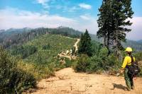Next Generation: Discover the Future of the U.S. Forest Service