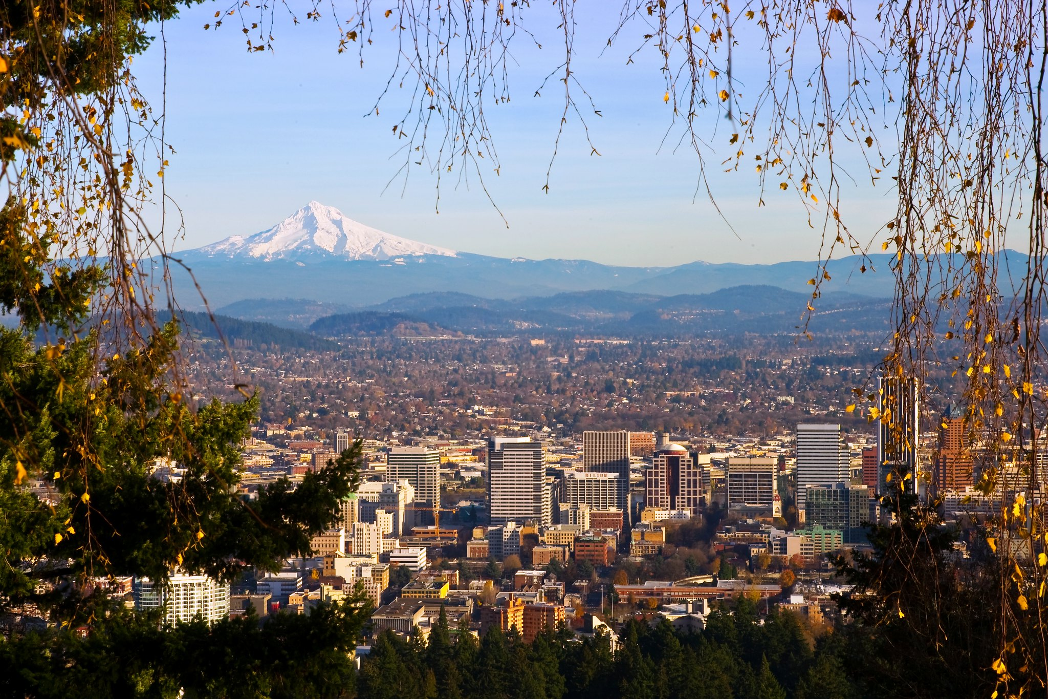 View of Mount Hood from Pittock Mansion