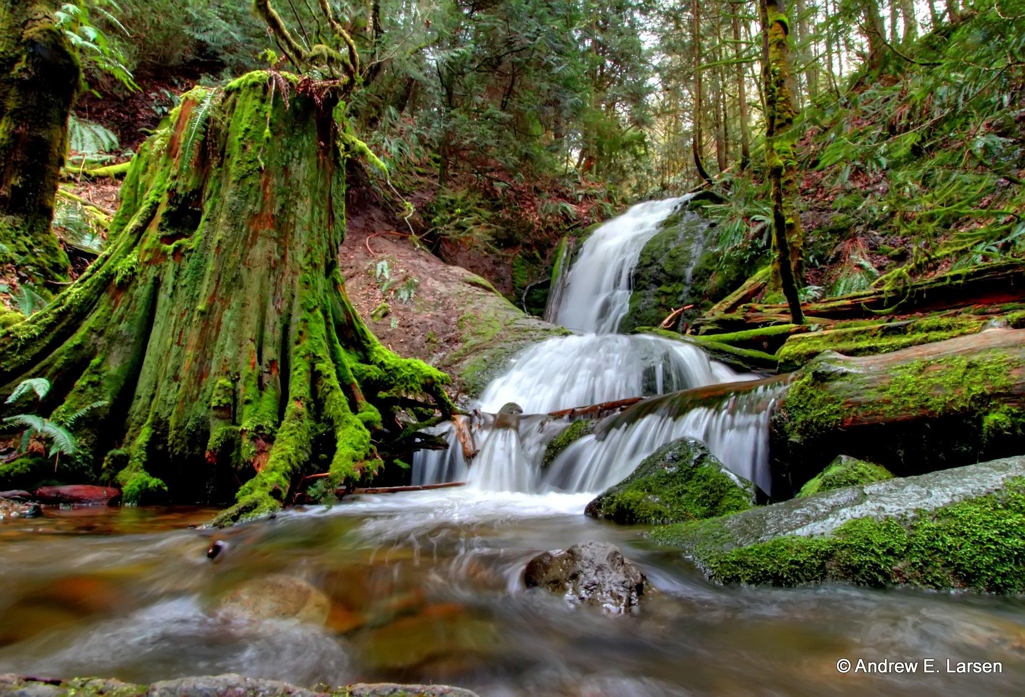 Coal Creek Falls hike near Seattle